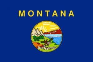 montana_flagge